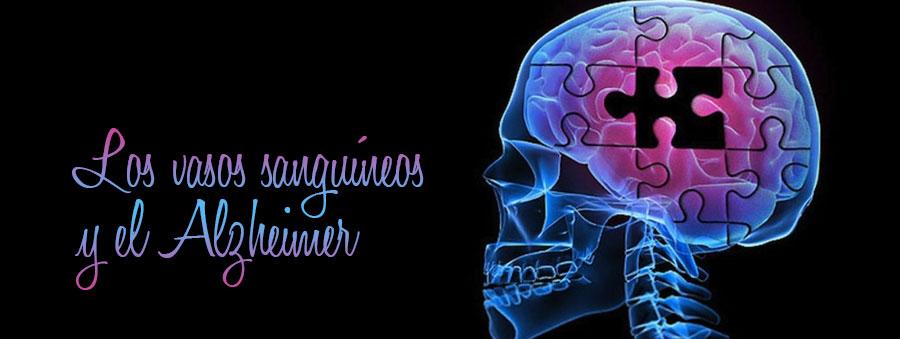Alzheimer-vasos-sanguineos